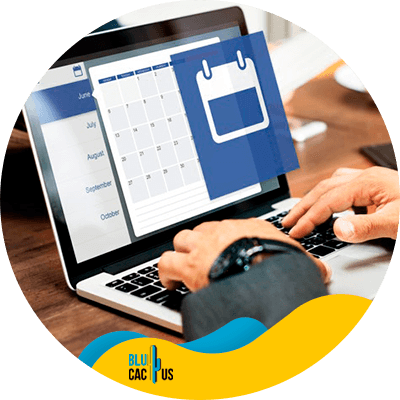 BluCactus - marketing digital para empresas - calendario