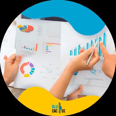 BluCactus - marketing digital para empresas - Estadisticas