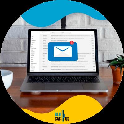 BluCactus - marketing digital para empresas - email
