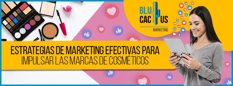 Blucactus Venezuela - cosmeticos - Portada