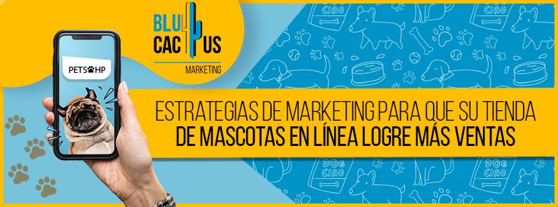Blucactus Venezuela - tiendas de nascotas - Portada