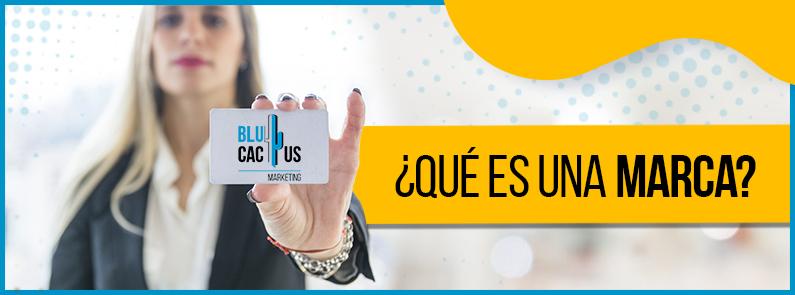 Blucactus Venezuela - que es una marca - portada