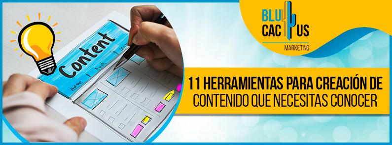 Blucactus VE-11-herramientas-para-creacion-de-contenido-que-necesitas-conocer-portada