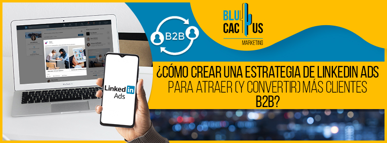 Blucactus VE- Linkedin ads - Portada