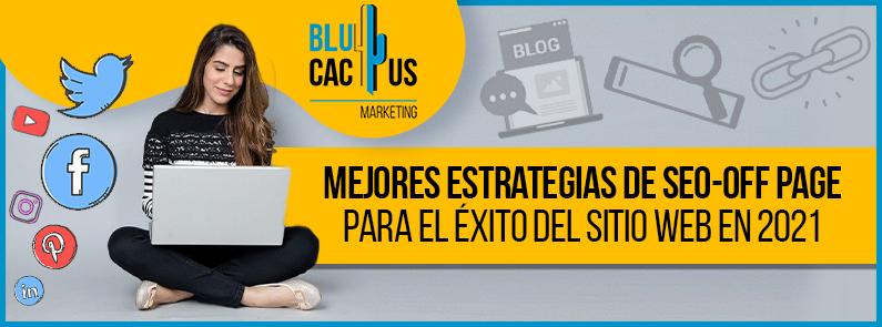BluCactus VE - SEO-off page - portada