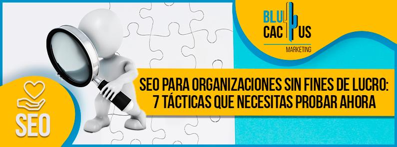 Blucactus VE - SEO para organizaciones sin fines de lucro - Portada