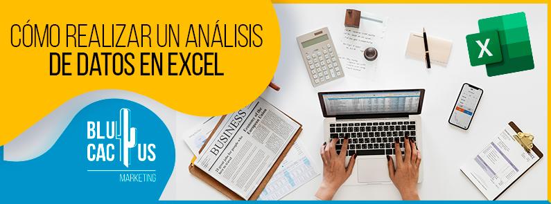 Blucactus VE - análisis de datos en Excel - Portada