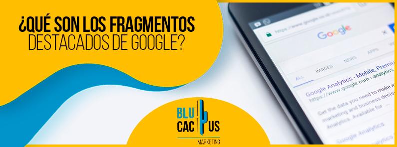 Blucactus VE - ¿Qué son los fragmentos destacados de Google? - Portada